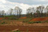 Motocross 3/31/2012 (22/610)