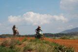 Motocross 3/31/2012 (277/610)
