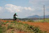 Motocross 3/31/2012 (283/610)