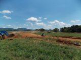 Motocross 6/23/2012 (49/82)